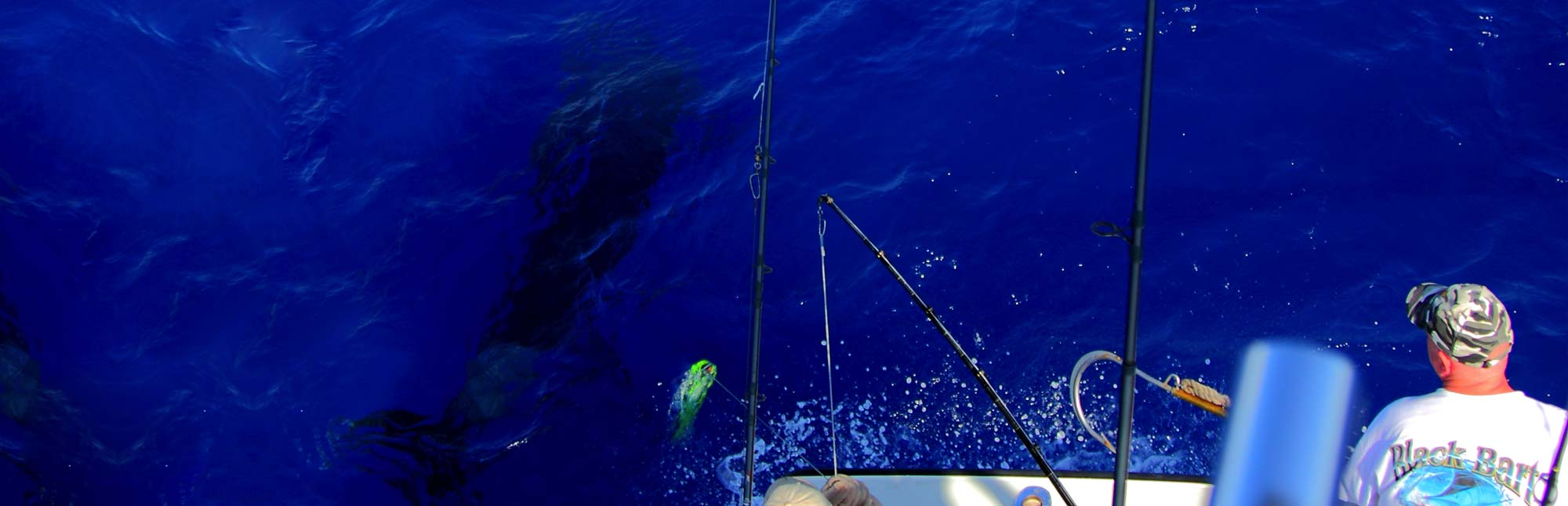 world-cup-blue-marlin-championship-1