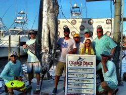 2017 Blue Marlin World Cup Winner