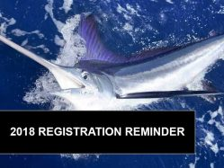 2018 Registration World Cup Blue Marlin